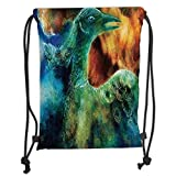 Custom Printed Drawstring Backpacks Bags,Fantasy House Decor,Mythical Legendary Phoenix Rebirth Long New Life from the Ashes Sun Exceptional Image,Multi Soft Satin,5 Liter Capacity,Adjustable Str