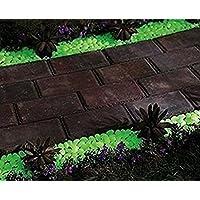 Piedras decorativas Tfxwerws fosforescentes para delimitar caminos(20 unidades)