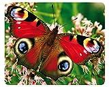 'Paon Papillon': haute qualité Wildlife Tapis de souris avec animaux/Tapis de souris avec image de papillons-fabriqué en Allemagne