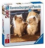 Ravensburger–500Teile quadratisch: Katzen himalayos, (152209)