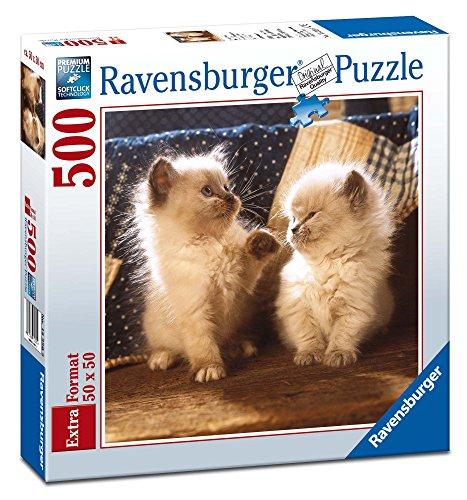Ravensburger - Cuadrado: Gatos himalayos, Puzzle de 500 Piezas (15220 9)