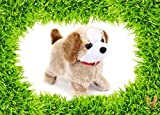 CIERN Cute Walking, Barking and Jumping Plastic Puppy Toy for Kids (Brown)