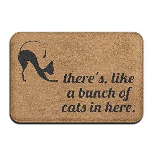 There's, Like A Bunch of Cats In Here. Super Absorbent Anti-Slip Mat Indoor/Outdoor Decor Rug Doormat 23.6