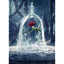 Fun Sponsor DIY 5D Diamond Painting, Photos de Broderie de Strass en Cristal Arts Craft pour le Décor de mur à la Maison by Foret complet (30x45cm)