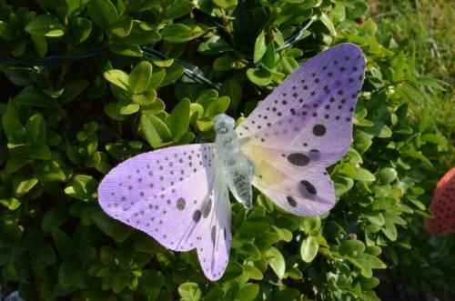 LED Solarlichterkette mit 10 farbigen Schmetterlingen - solarbetrieben mit eingebauten Akkus (Solar-outdoor-anteil Lichter)