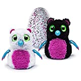 Hatchimals Bearakeet - Interactive Egg Creature - Pink / Black - What will you hatch?