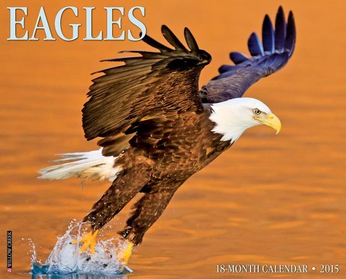 Eagles 2015 Wall Calendar by Willow Creek Press (2014-06-15)