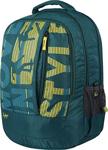 Skybags Bingo 02 32 Ltrs Teal Casual Backpack (Bingo 02) Image 3