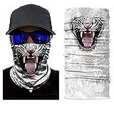 ILOVEDIY Tour de Cou Moto Tete de Mort Clown 3D Crane Cagoule Masque Multifonction Homme Halloween Deguisement (#11)