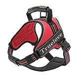 Hundegeschirr, Brustgurt Einstellbar Explosionsgeschützt Reflektierender Streifen Atmungsaktive Leine Für kleine mittelgroße und große Hunde Brustgurt (Farbe : Red, größe : M)
