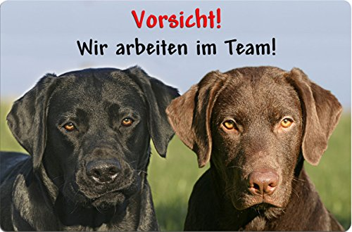 +++ LABRADOR Retriever - Metall WARNSCHILD Schild Hundeschild Sign - LAB 36 T16 S BRA - Lab Metall