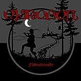 """Eisregen: Flötenfreunde (Ltd.10"""" Vinyl) [Vinyl Maxi-Single] (Vinyl)"""