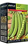 Batlle Gemüsesamen - Zwergerbse Lincoln-Ganxo (100g)