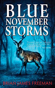 Blue November Storms by [Freeman, Brian James]