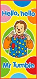 Something Special Mr Tumble Beach Towel, 100 Percent Cotton, Multi-Colour, 70 x 140 cm