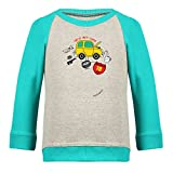Clifton Baby Boys Raglan Printed Full Sleeve T-shirts -Grey Melange-Teal -Caaro-12-18 Months