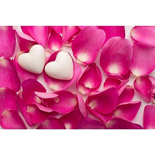 PB Rose Petals & Hearts Photo Peel & Stick Vinyl Wall Sticker 54 x 36inch