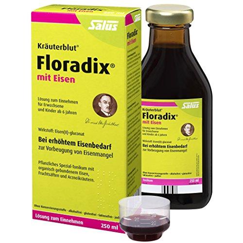 Floradix mit Eisen, 250 ml - Alternative zu Eisentabletten - Pflanzliches Spezial-Tonikum Schwangere & Kinder ab 6 - Eisenpräparat zur Vorbeugung von Eisenmangel