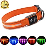 MASBRILL Dog Collar (XS(35X2cm/13.78x0.78), Orange)
