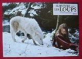 6 photos du film Survivre avec les loups (2007)