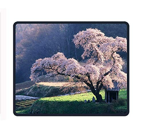 Cherry Blossom Tree 8.66 X 7.09 Inch Computer Mouse Pad with Neoprene Backing and Jersey Surface - Blossom Jersey
