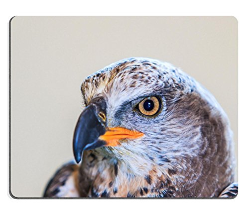 Msd Natural rubber Gaming Mousepad Image ID 34350463 Eagle Crowned Stepphanoaetus Coronatus