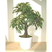 Ficus Albero (44cm) - Pianta Artificiale (SENZA VASO)