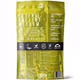 Organic Performance Protein- Organic, Plant-Based Protein and Super-Food Blend | 100% Natural | Vegan | Organic | Raw Cacao, 980g, 28 Servings