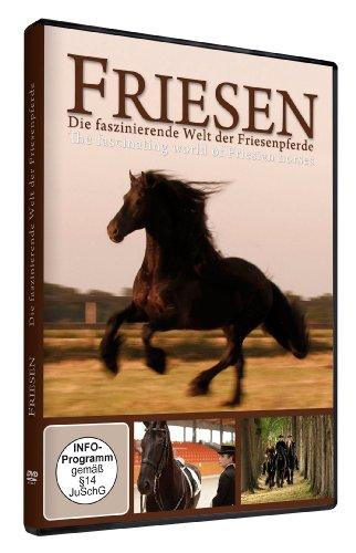 Friesen: Die faszinierende Welt der Friesenpferde