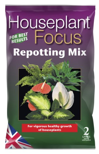 houseplant-focus-repotting-mix-2-litre