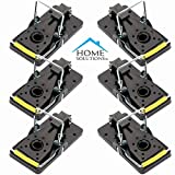 Home Solutions Mouse Trap 6 Pack Kill Mice Catcher, fácil de establecer Control reutilizable Snap Traps