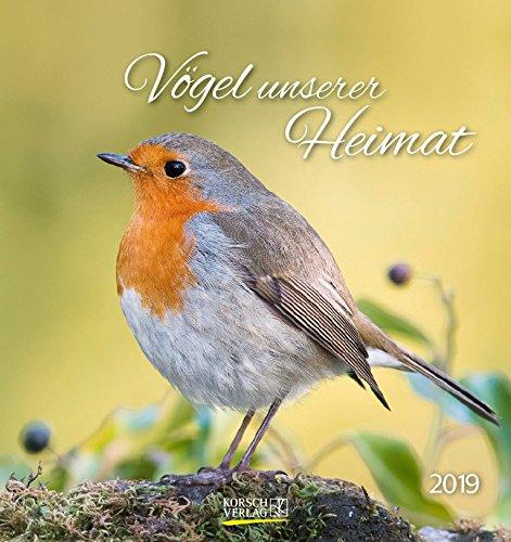 Vögel unserer Heimat 2019: Aufstellbarer Postkartenkalender mit Bildern von Vögeln in der Natur der Heimat. Tisch- und Wandkalender.