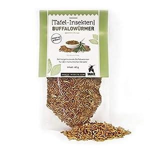 Buffalowürmer – essbare Insekten von 'SNACK insects' – 40g feine Speise-Insekten zum Kochen und Essen