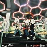 Foolish Loving Spaces [VINYL]
