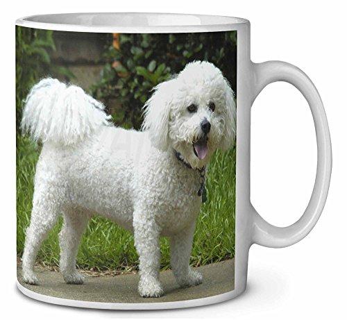 Bichon Frise Hunde Kaffeetasse Geburtstag / Weihnachtsgeschenk