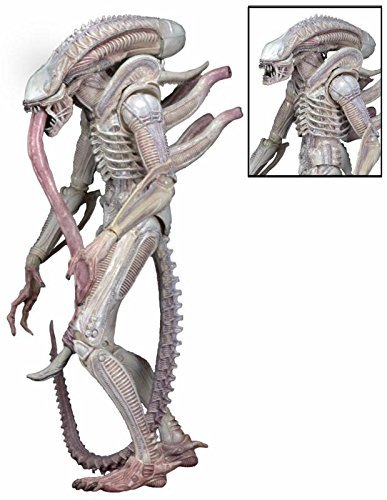 NECA Series 9 Albino Alien Action Figure by Alien 1