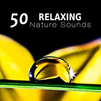 50 Relaxing Nature Sounds: Calming Instrumental Ambient Music for Yoga Meditation, Spa Massage and Sleep Therapy