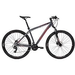 CLOOT Bicicletas de montaña 29 XR Trail 90 24v-Bicicleta 29, Frenos Disco, Cambio Shimano 24V (Talla L (178-187))