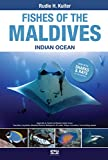 Fishes of the Maldives, Indian Ocean.