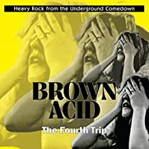 Brown Acid: the Fourth Trip [Vinyl LP]