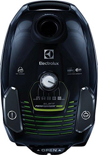Electrolux ESP7GREEN Aspiradora, 3.5 litros, Ebony Black/Sage Green