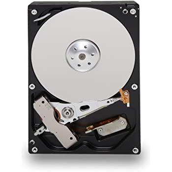 TOSHIBA DT01ACA100 1TB 7200 RPM 32MB Cache SATA 6.0Gb/s 3.5-Inch Internal Hard Drive Bare Drive, Nero
