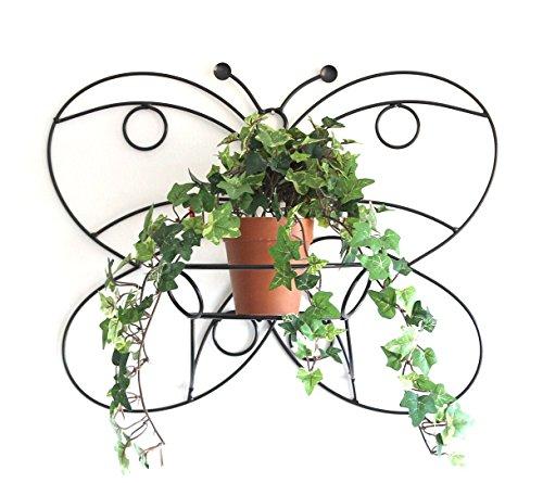 DanDiBo Wandtopfhalter Metall Schwarz 50 cm Schmetterling Blumenständer KW048 Wandhalter Blumentopfhalter Pflanzenhalter Blumenampel