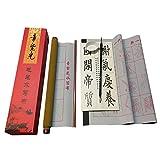Chinesische Kalligraphie Set wiederbeschreibbare Wasser Schreiben Tuch Stoff Scroll mit Bürste Rack und Wasser Gericht Schnell trocknend Stoff Tuch Papier für Anfänger Praxis Set (5Artikel)
