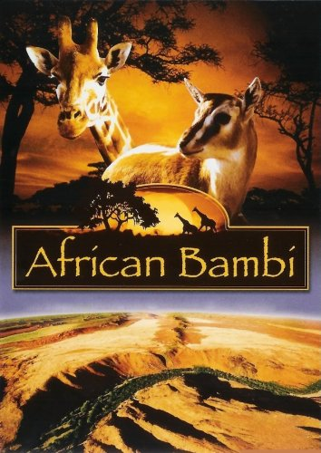 African Bambi Cover