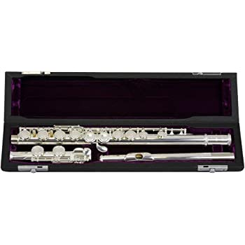 Betere Trevor James TJ10X Student Flute: Amazon.co.uk: Musical Instruments DQ-26
