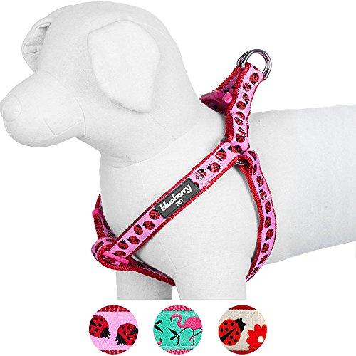 hundeinfo24.de Blueberry Pet Step-In Geschirre für Hunde Marienkäfer Designer Hundegeschirr mit Zugentlastung, Verstellbar, Nylon 50-65cm Brust, Passender Hundehalsband & Hundeleinen erhältlich separate
