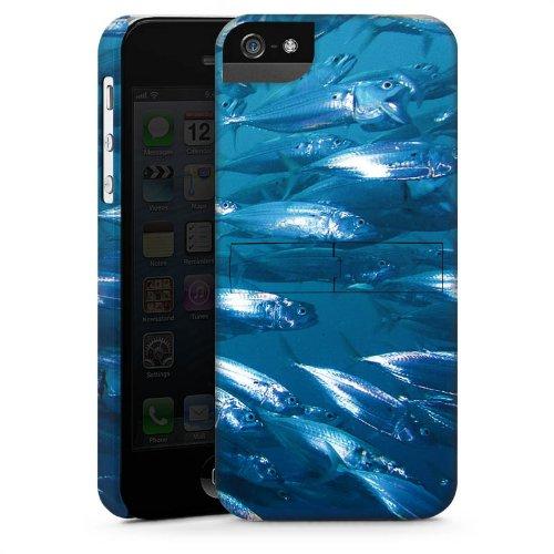 Apple iPhone 6 Housse Étui Silicone Coque Protection Poisson Poissons Banc de poissons CasStandup blanc