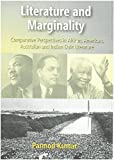 Literature And Merginality: Comparative Perspectives In African American - Best Reviews Guide