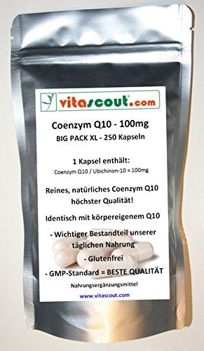 Coenzym Q10 - 100 mg - 250 Kapseln - für über 8 Monate - PN: 10222
